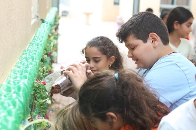 הקמת קיר ירוק בבית ספר - הגן הסולארי