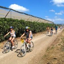 טיול אופניים אקולוגי