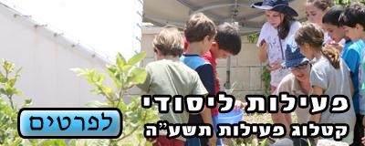 """פעילויות איכות הסביבה לילדים לבית ספר יסודי תשע""""ה 2014"""