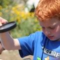 פעילויות יצירה, הפעלות ירוקות, קיימות, פעילות אקולוגית, איכות הסביבה, ילד ירוק, גן ירוק, בית ספר ירוק, בית ספר ירוק מתמיד, אנרגיה מתחדשת