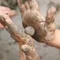 בניה באדמה, פעילות אקולוגית, בניה ירוקה, עבודה עם חימר, איכות הסביבה, ילד ירוק, גן ירוק, בית ספר ירוק, בית ספר ירוק מתמיד